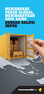 Import Solution